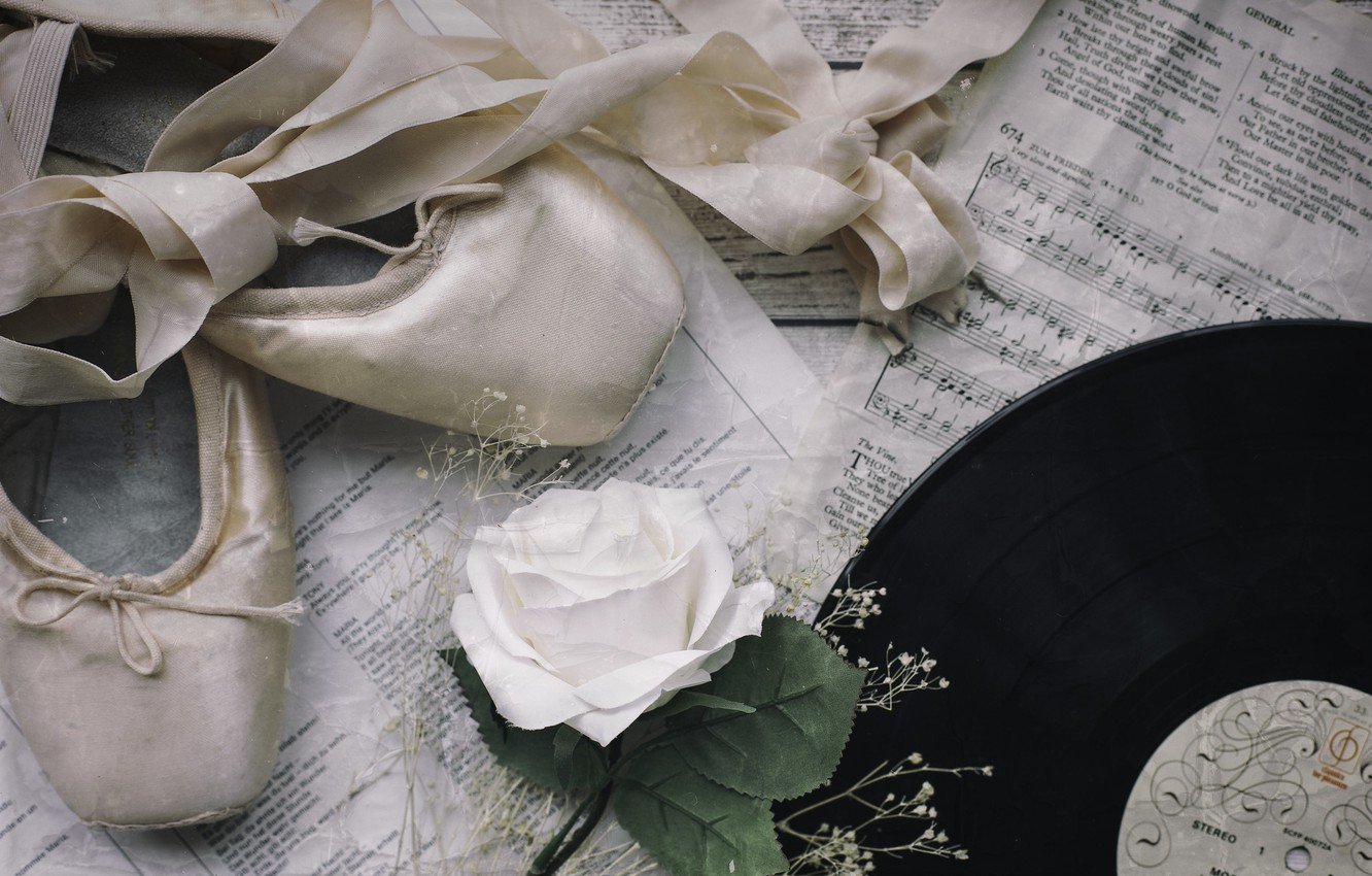 Photo wallpaper notes, rose, record, Pointe shoes