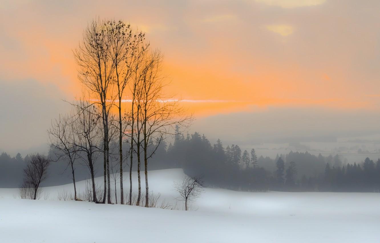 Photo wallpaper winter, sunset, fog