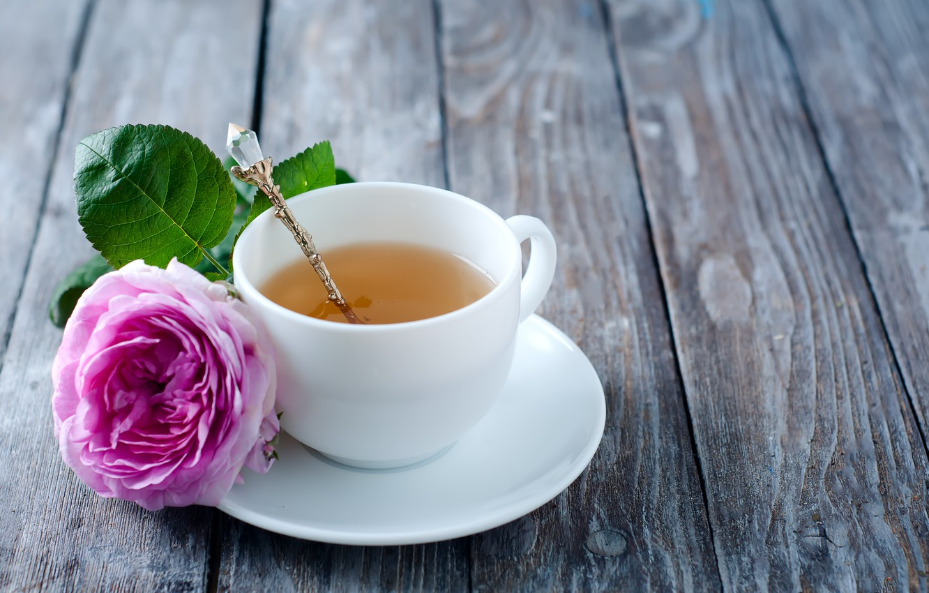 Photo wallpaper rose, rose, flower, pink, cup, tea, Cup of tea