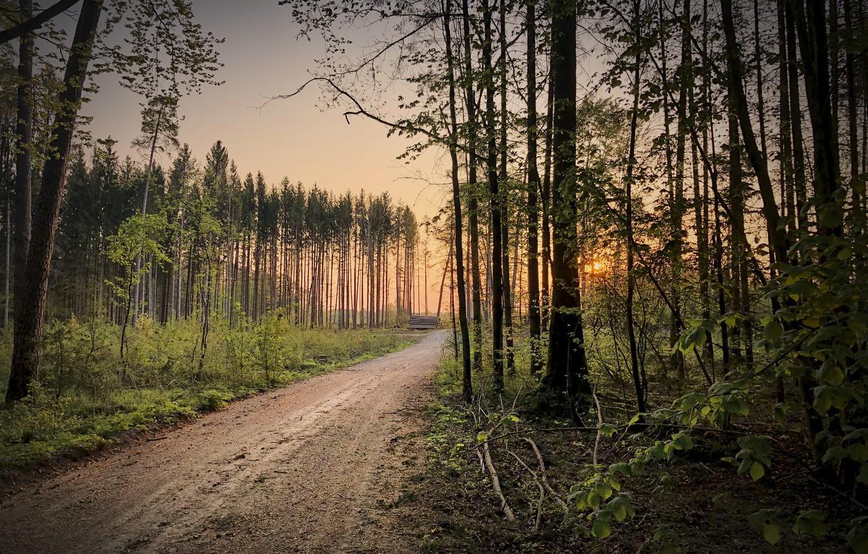 Photo wallpaper Germany, Bavaria, Another sunrise, Emmerting