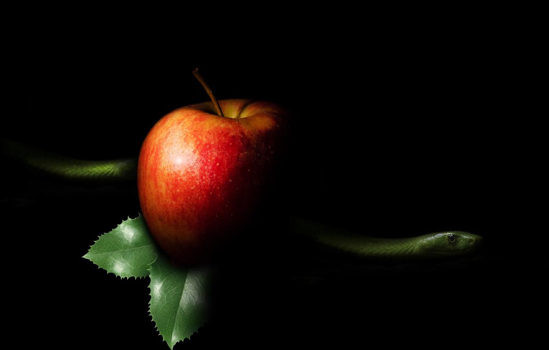 Photo wallpaper Apple, snake, sin