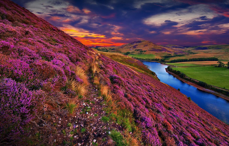 Photo wallpaper colorful, river, sky, trees, landscape, nature, sunset, flowers, clouds, hills, Scotland, United Kingdom, Pentland Hills