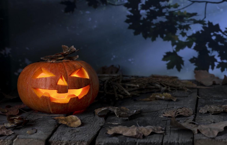Photo wallpaper autumn, leaves, pumpkin, Halloween, halloween, autumn, leaves, pumpkin