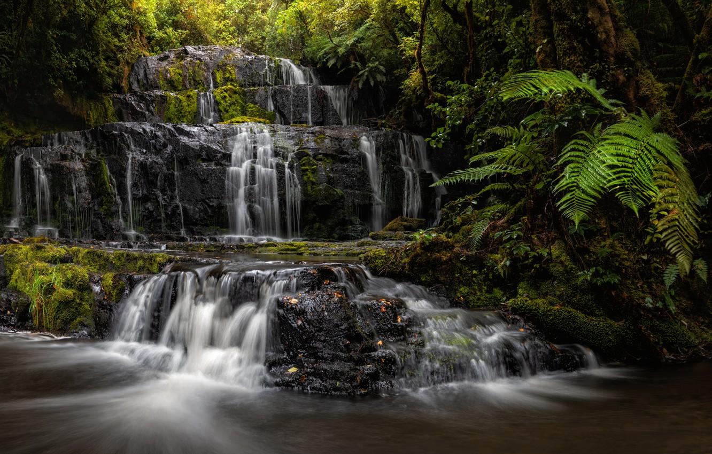 Photo wallpaper forest, river, waterfall, New Zealand, cascade, New Zealand, fern, Purakaunui Falls, Purakaunui River, Catlins, The …