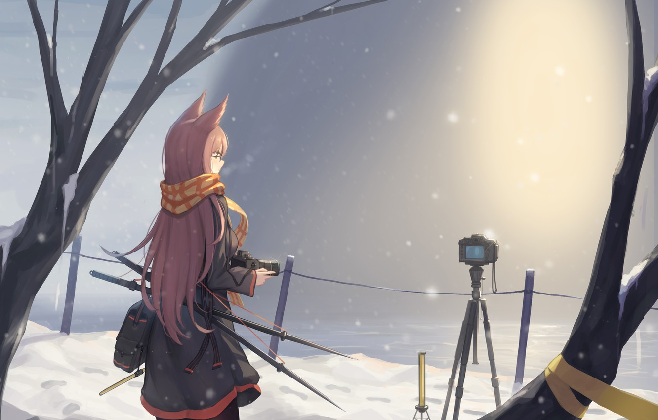 Photo wallpaper winter, water, girl, snow, the camera, ears