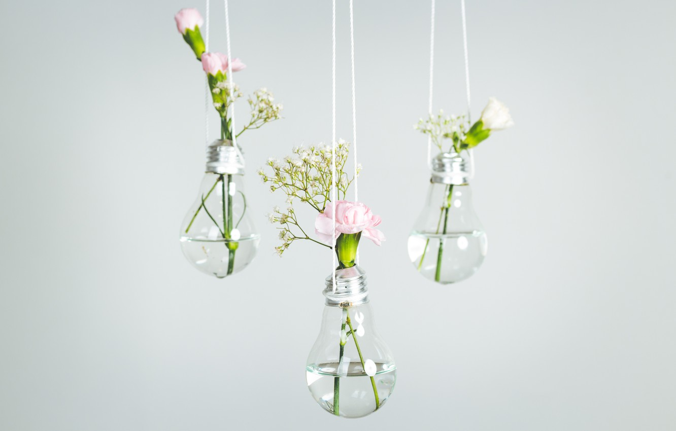 Wallpaper Glass Flowers Lamp Decor Vases Minimalism Images