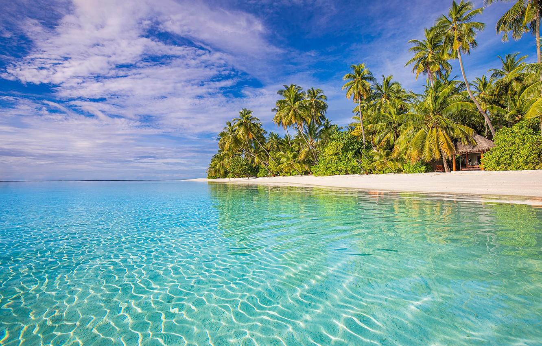 Photo wallpaper beach, tropics, palm trees, the ocean, The Maldives, The Indian ocean