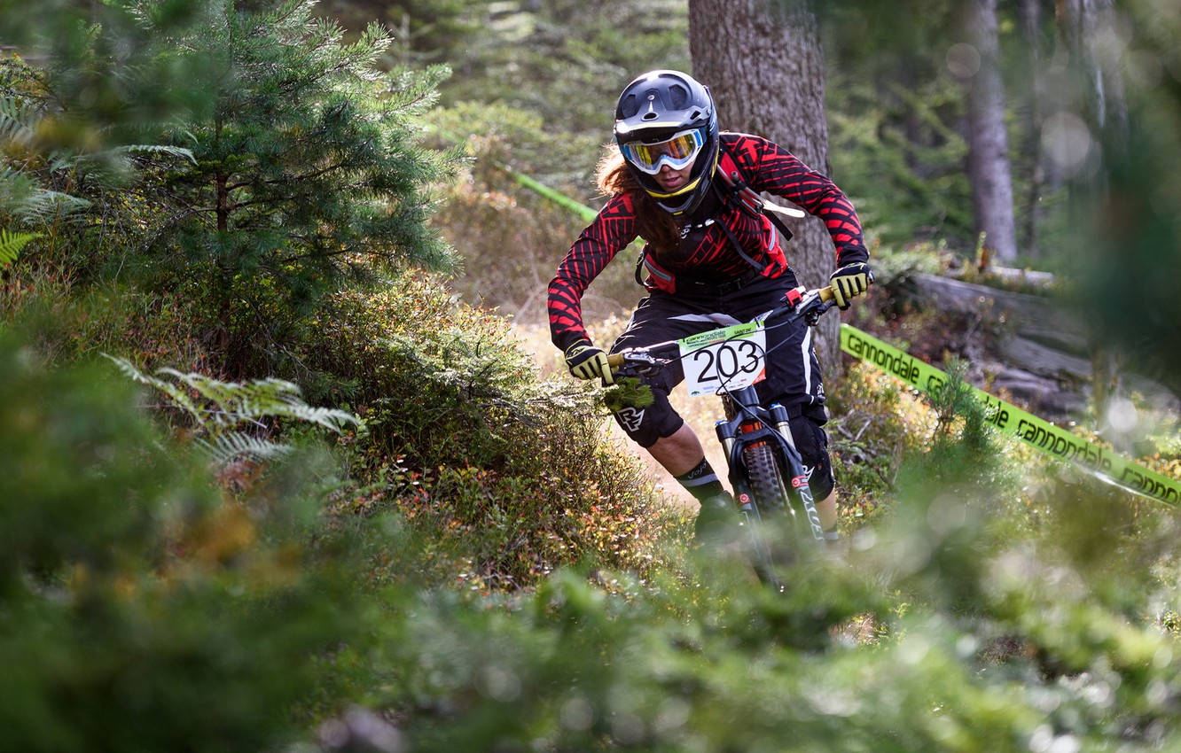 Photo wallpaper forest, track, tape, cyclist, Cannondale Enduro Tour