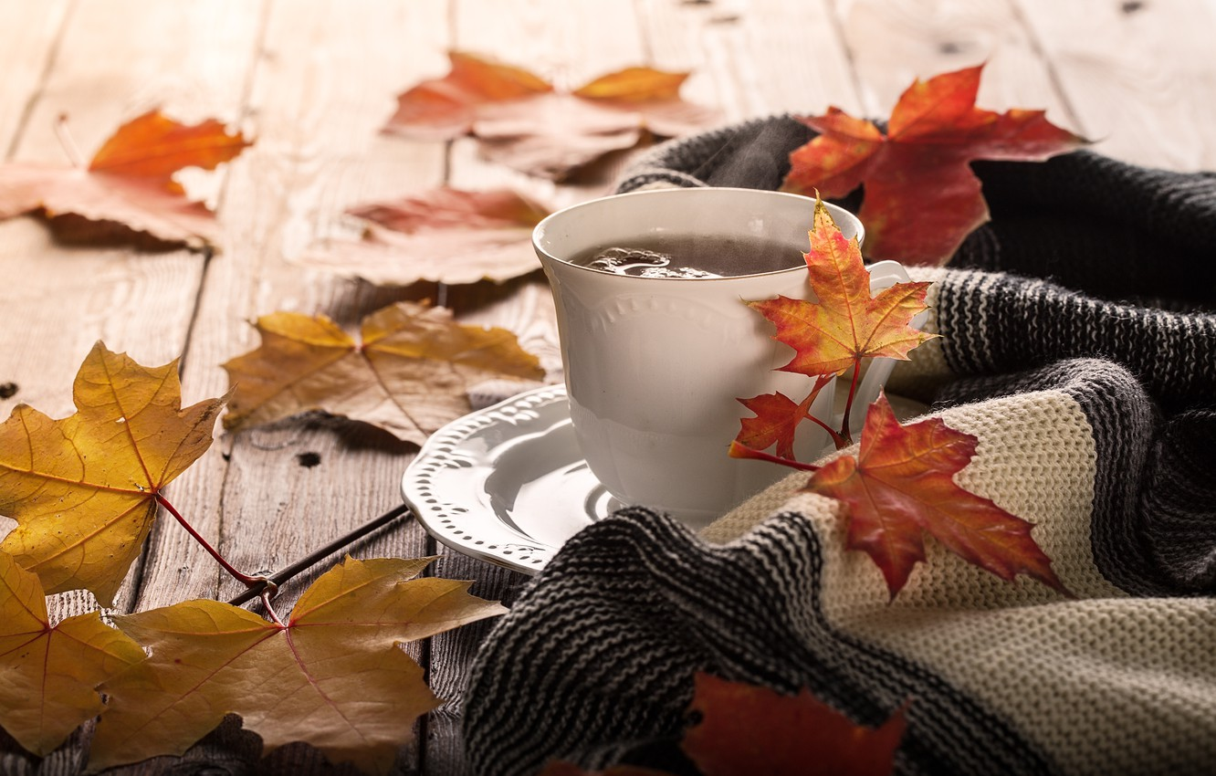 Photo wallpaper autumn, leaves, background, colorful, maple, wood, autumn, leaves, cup, coffee, a Cup of coffee, maple