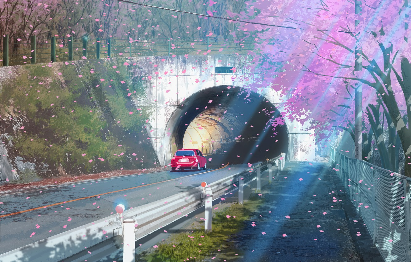 Photo wallpaper road, auto, the tunnel, flowering