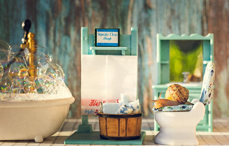 Photo wallpaper foam, macro, bubbles, basket, snail, bathing, bath, toilet, towels, the toilet, toy, bathroom, personal care, …