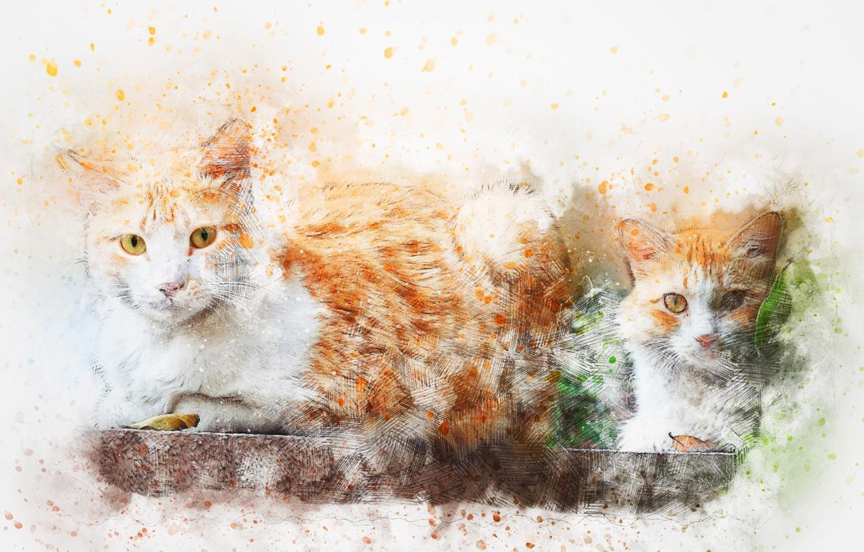 Photo wallpaper cats, background, watercolor, art