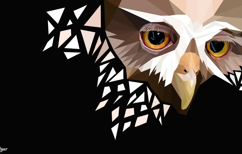 Photo wallpaper owl, sad face, polygon graphics