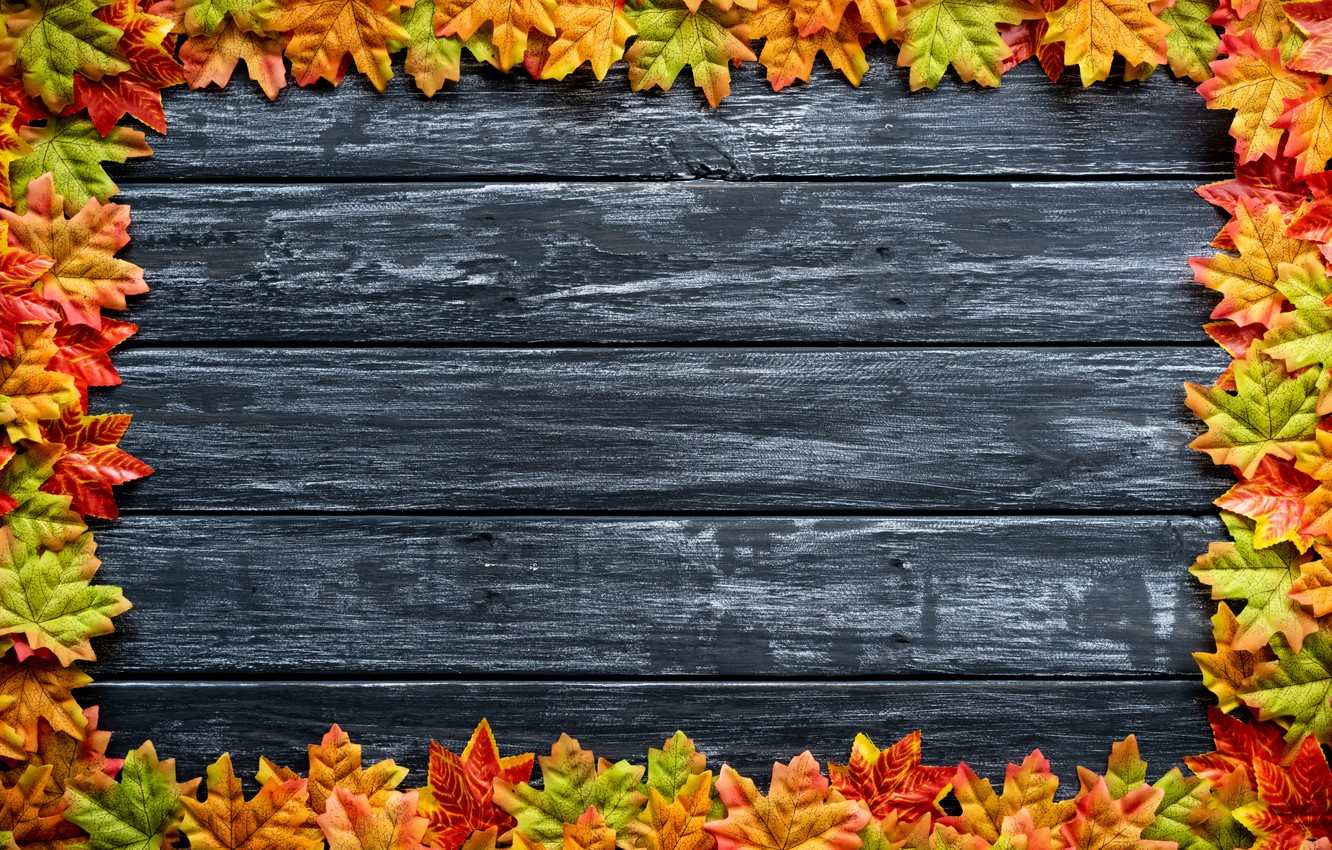 Photo wallpaper autumn, leaves, background, Board, colorful, maple, wood, background, autumn, leaves, autumn, maple