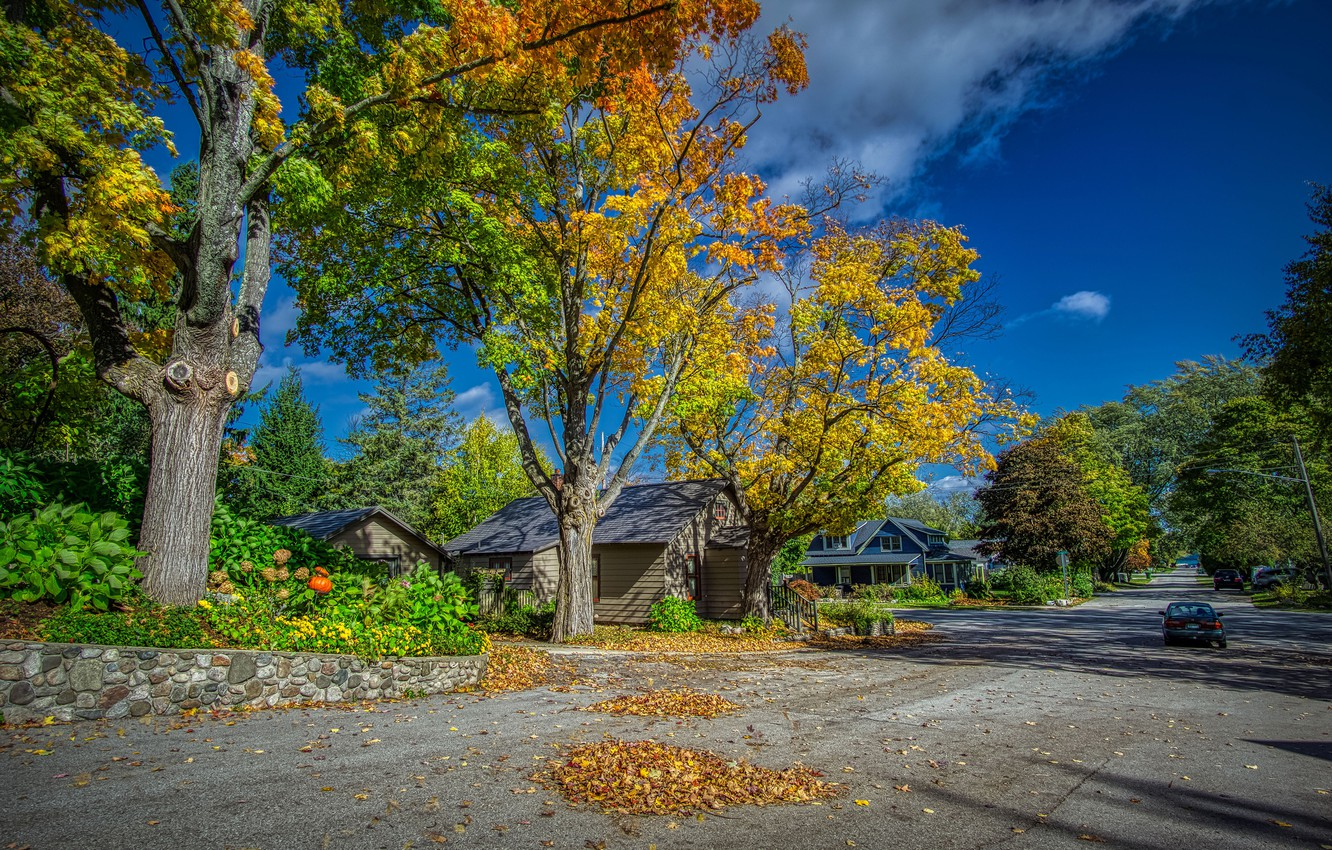 Photo wallpaper road, autumn, the sky, leaves, the sun, clouds, trees, machine, street, home, USA, yellow, Michigan, ...