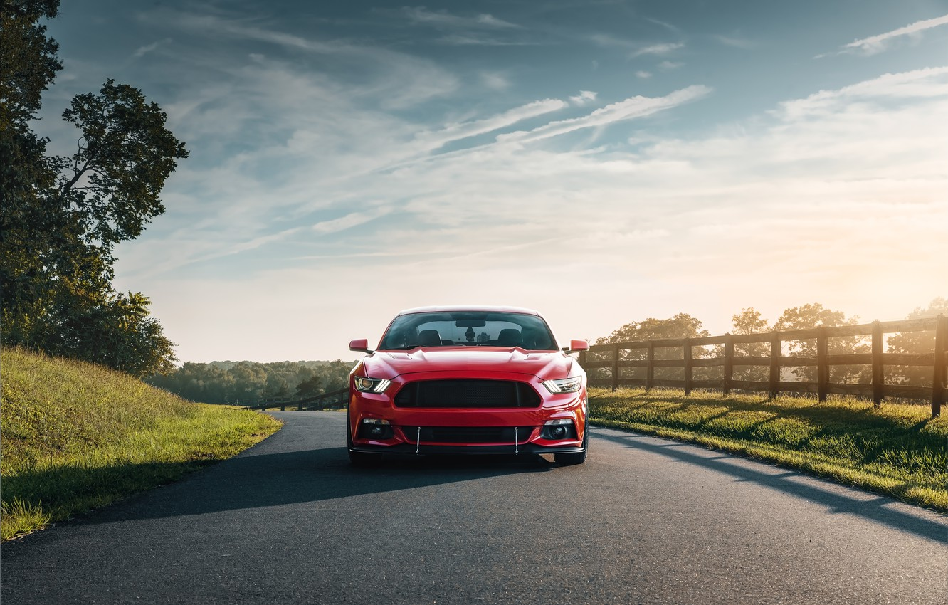Photo wallpaper Mustang, Ford, front view, 2018, Mustang GT, by Jimmy Zhang