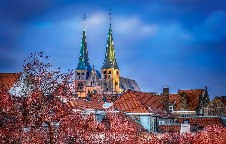 Photo wallpaper Church, Netherlands, Bergkerk, Saint Nicholas Church