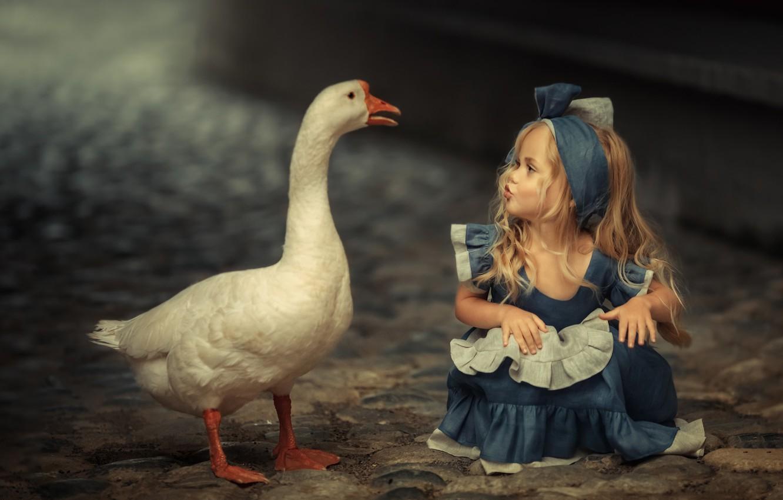 Photo wallpaper mood, bird, meeting, girl, goose, familiarity