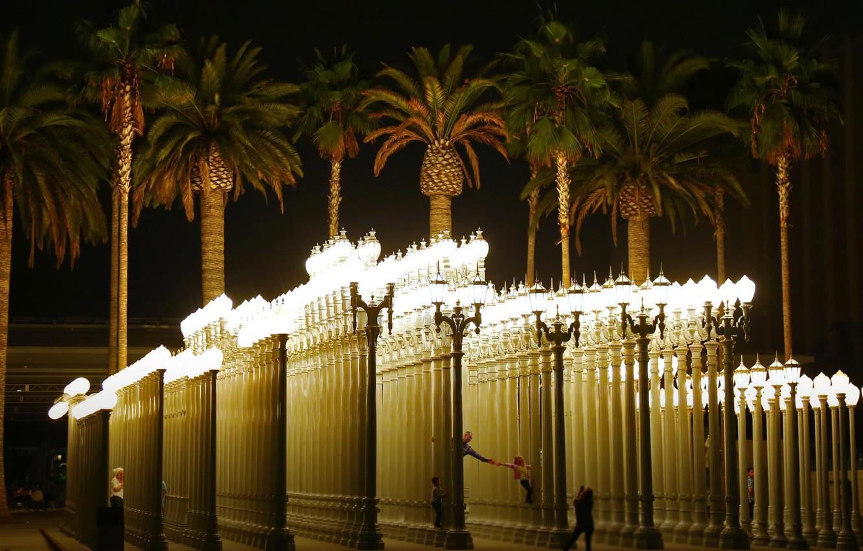 Wallpaper Palm Trees Lights Ca Usa Los Angeles Installation