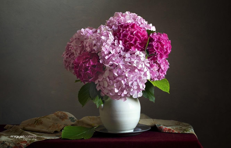 Photo wallpaper pink, bouquet, vase, hydrangea