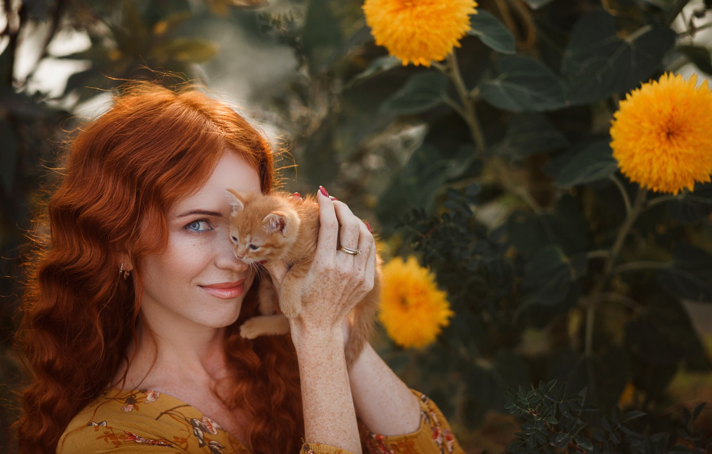 Photo wallpaper look, girl, sunflowers, face, smile, kitty, baby, red, redhead, ginger kitten, Albina Shakirova