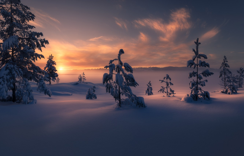 Photo wallpaper winter, snow, trees, sunset, Norway, the snow, Norway, RINGERIKE, Ringerike