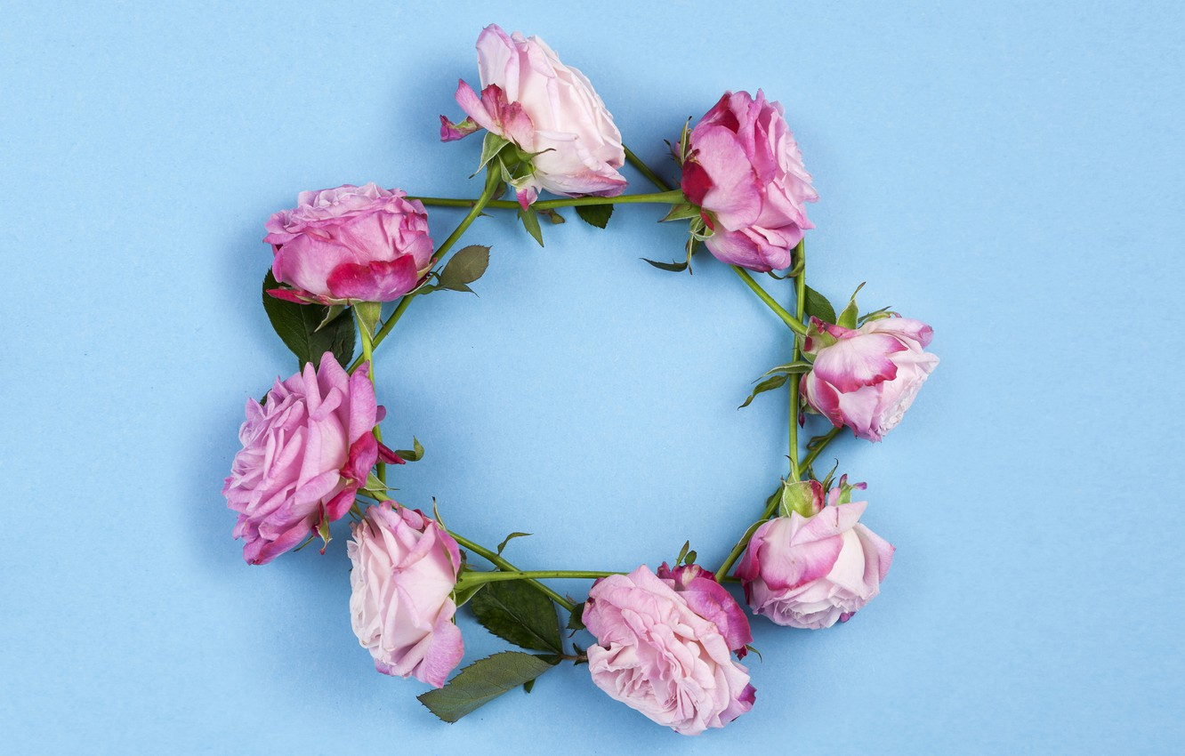 Photo wallpaper flowers, roses, pink, wreath, wood, pink, flowers, beautiful, roses, wreath