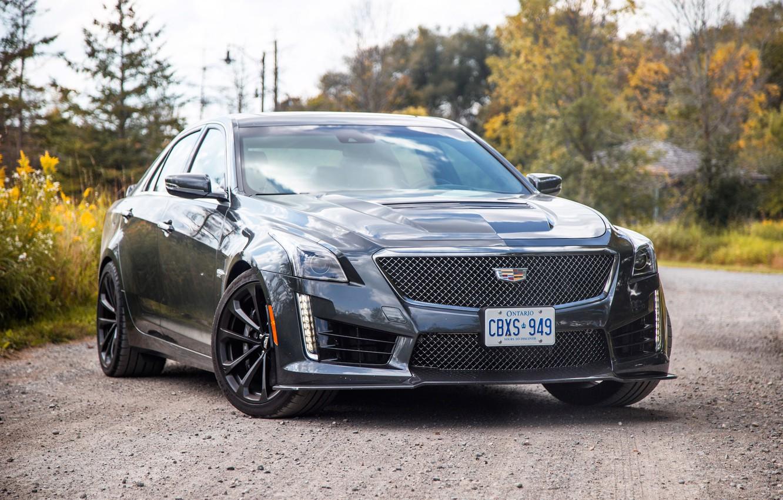 Photo wallpaper road, car, machine, forest, Cadillac, black, sedan, black, front, rooms, wheel, Ontario, sports car, aggressive, …