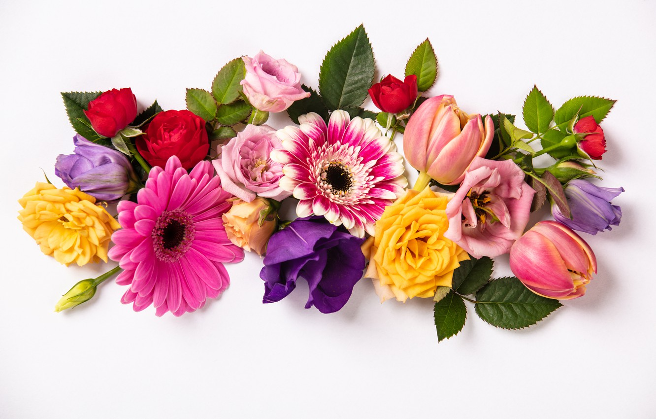 Photo wallpaper flowers, colorful, flowers, composition, floral