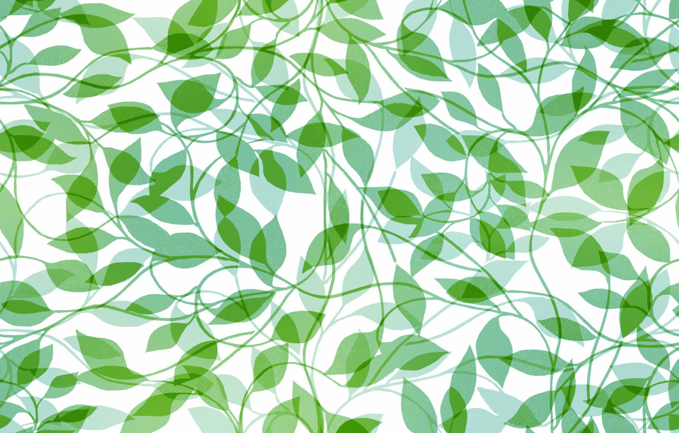 Photo wallpaper white, leaves, background, texture, green