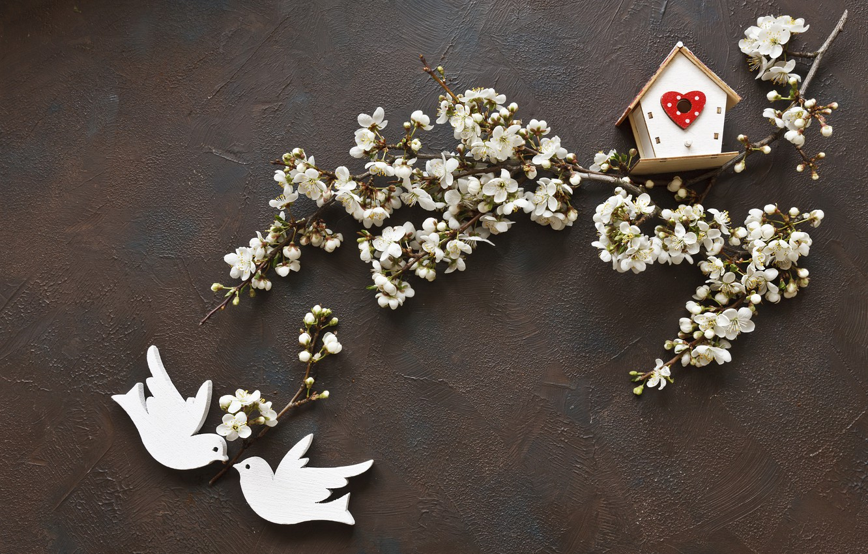 Photo wallpaper flowers, spring, love, white, white, wood, blossom, flowers, romantic, spring