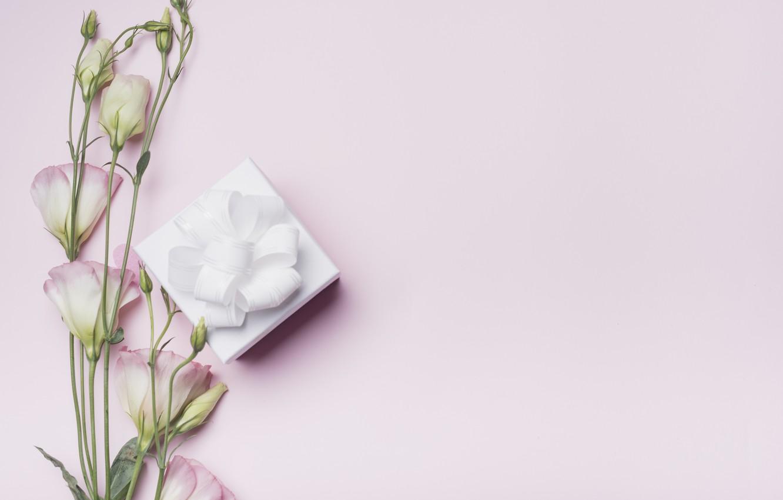 Photo wallpaper flowers, background, pink, gift, love, box, pink, flowers, gift, valentine, eustoma, eustoma