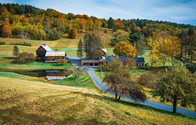 Photo wallpaper road, autumn, forest, hills, slope, village, houses