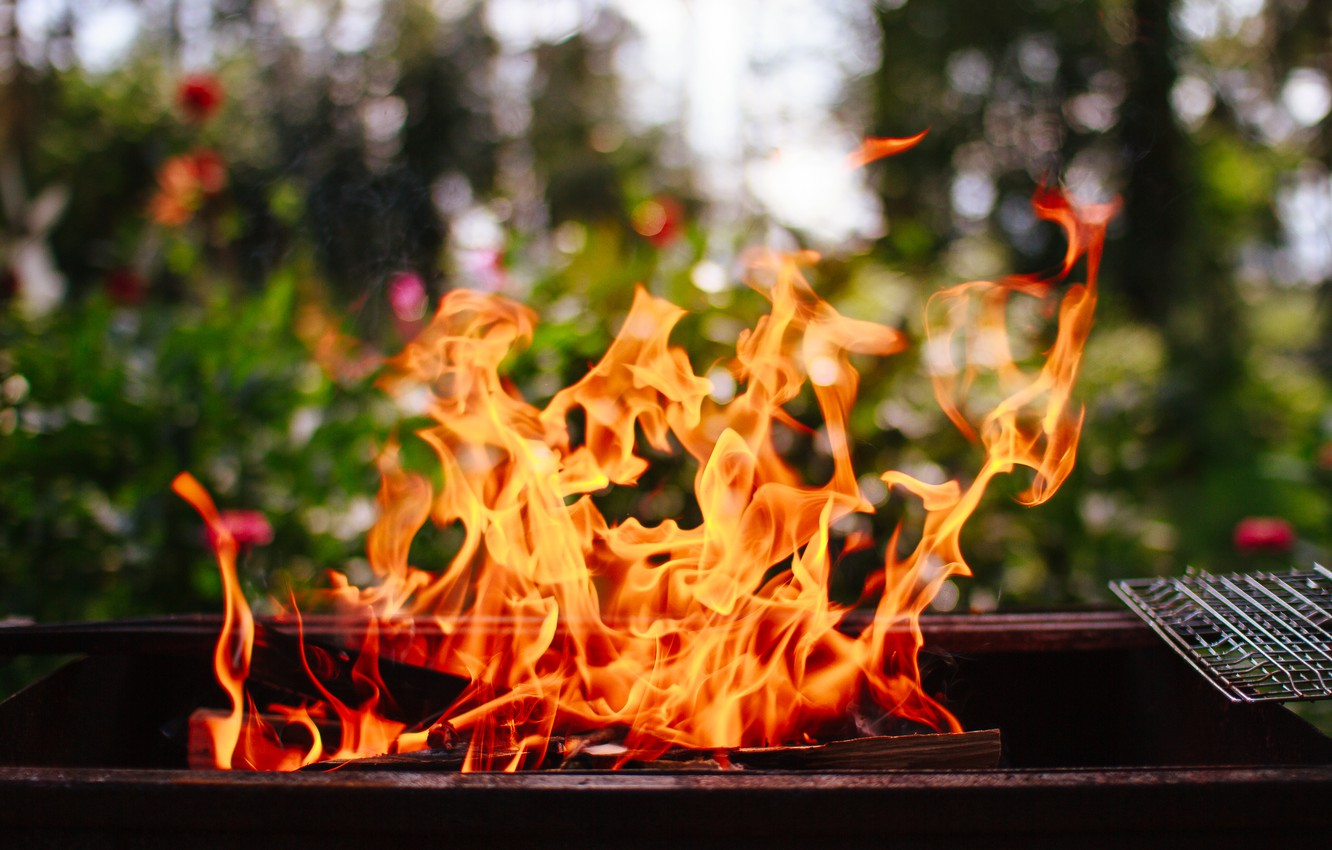 Photo wallpaper summer, mood, fire, stay, grill