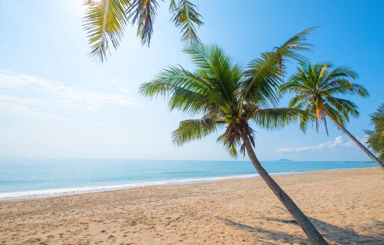 Photo wallpaper sand, sea, wave, beach, summer, the sky, palm trees, shore, summer, beach, sea, seascape, beautiful, …
