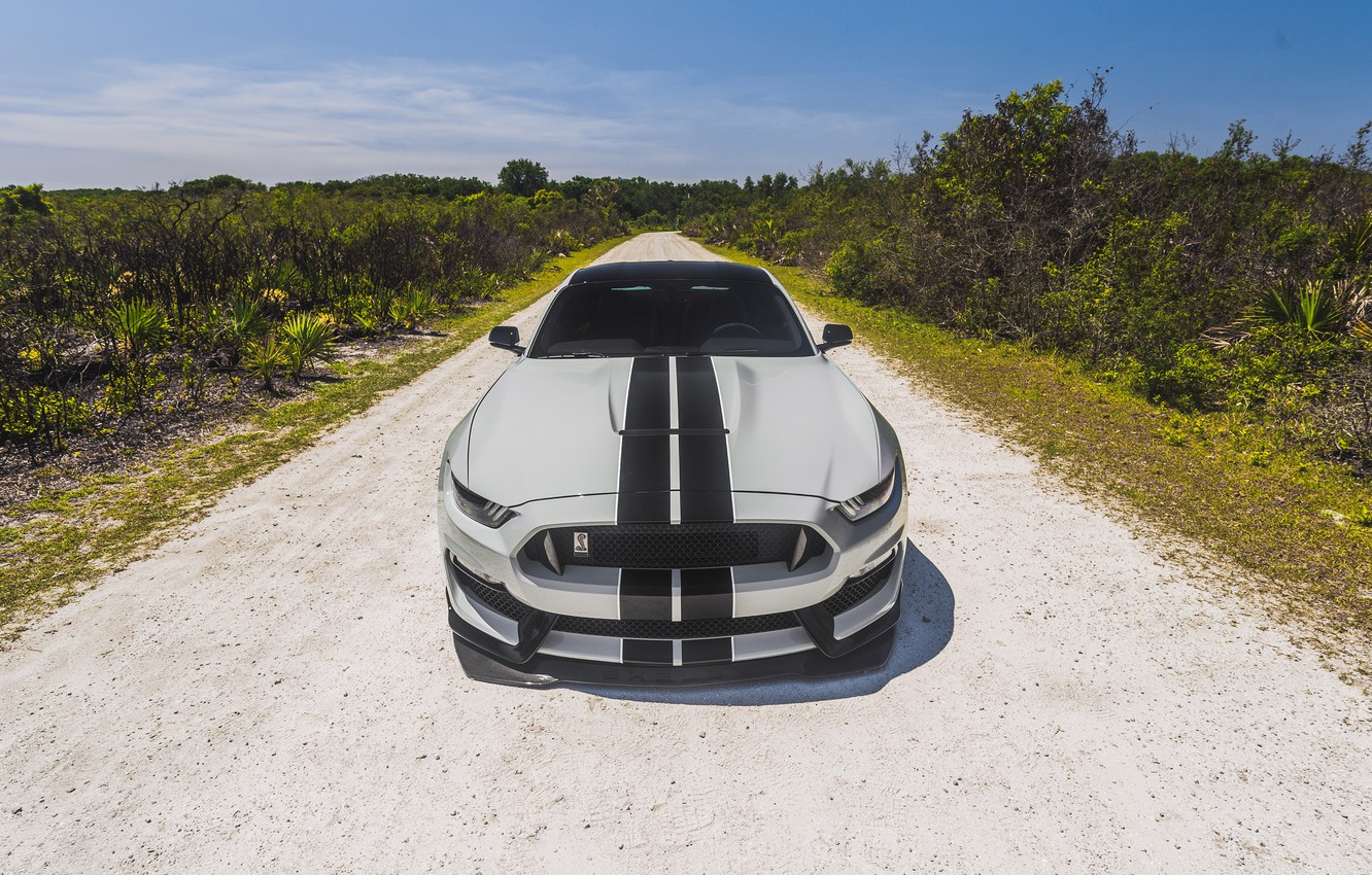 Photo wallpaper Mustang, Ford, Shelby, Ford Mustang, GT350, Ford Mustang Shelby GT350, Shelby GT350