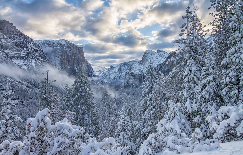 Photo wallpaper winter, forest, snow, trees, mountains, ate, CA, California, Yosemite Valley, Yosemite National Park, Sierra Nevada, …