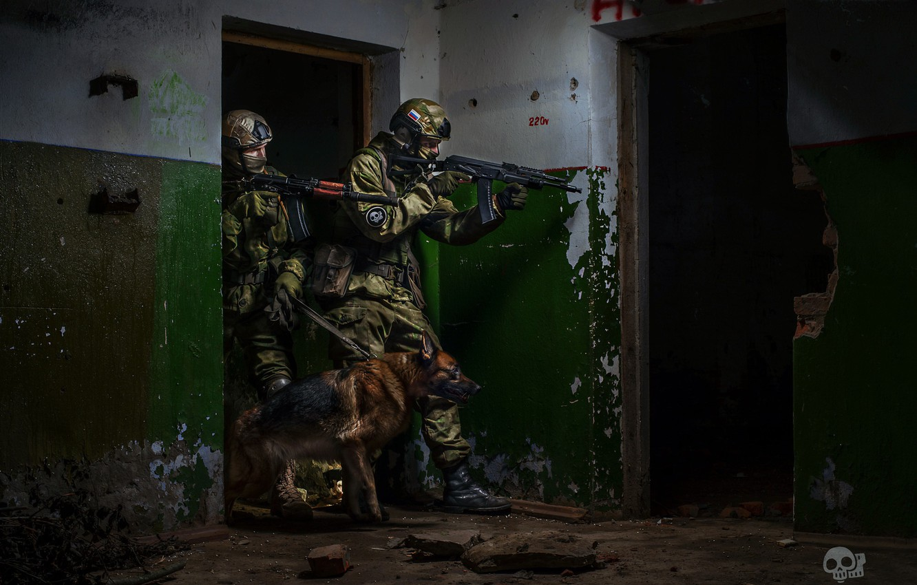 Photo wallpaper dog, soldiers, special forces