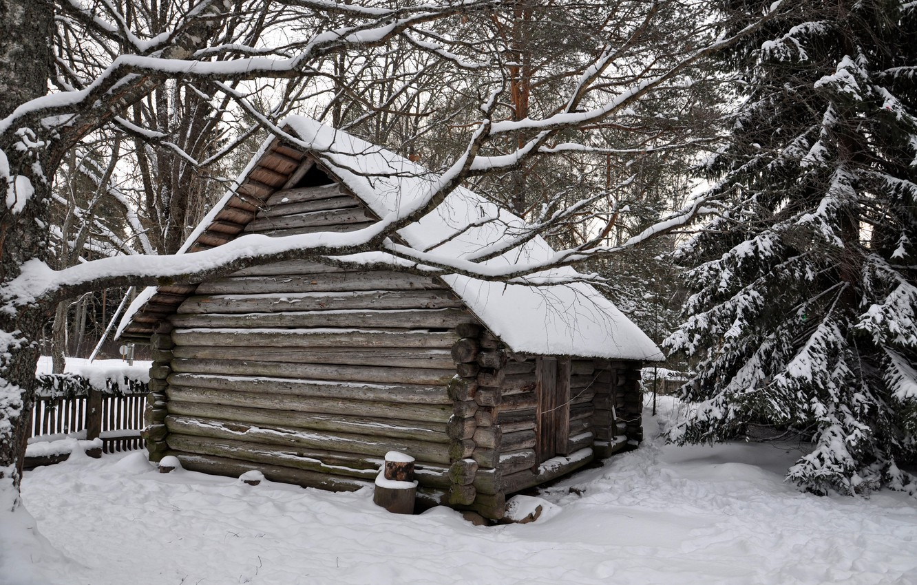 Photo wallpaper winter, forest, snow, trees, hut, village, house, house, hut, forest, landscape, winter, snow, countryside, hut