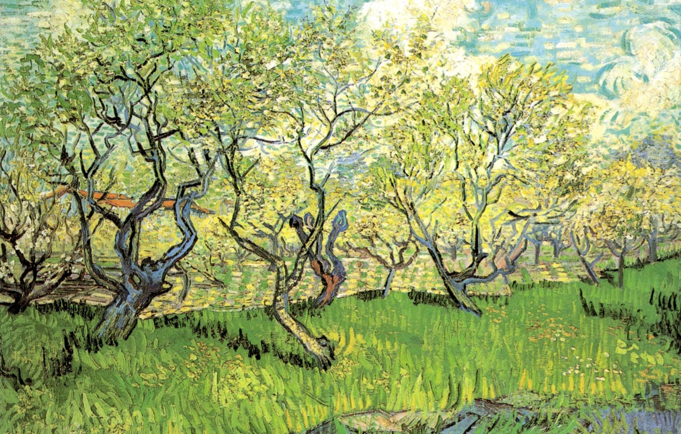 Photo wallpaper grass, clouds, trees, Vincent van Gogh, in Blossom 2, Orchard