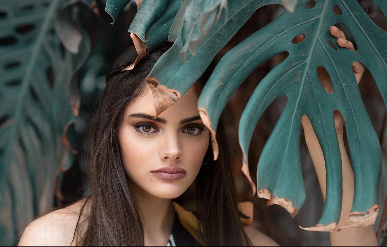 Photo wallpaper girl, portrait, Rosa Ortega