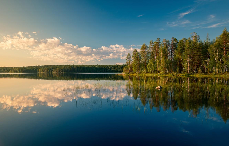 Photo wallpaper forest, lake, reflection, Finland, Finland, Boiler Lake Lake, Lake Katelari