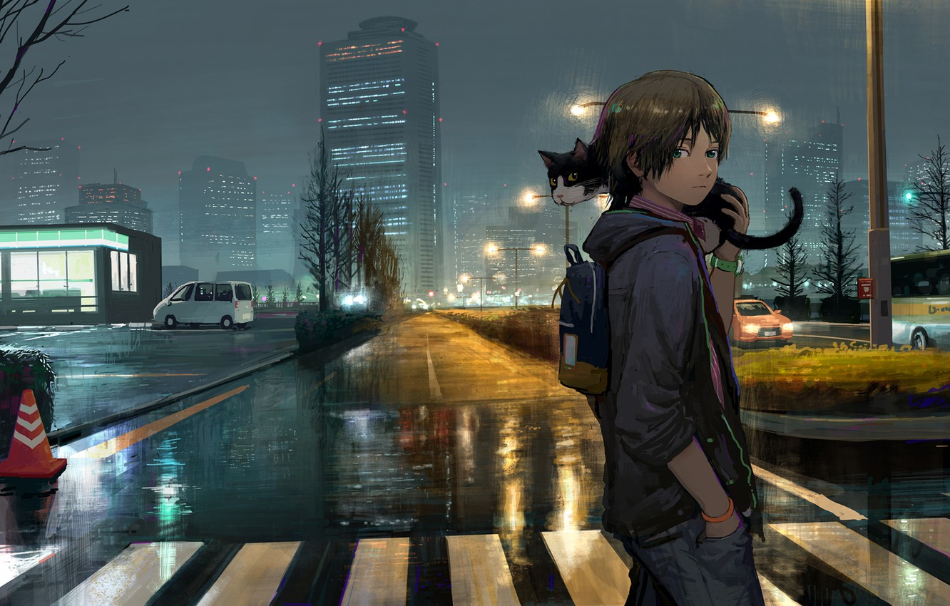 Photo wallpaper road, cat, the city, after the rain, guy