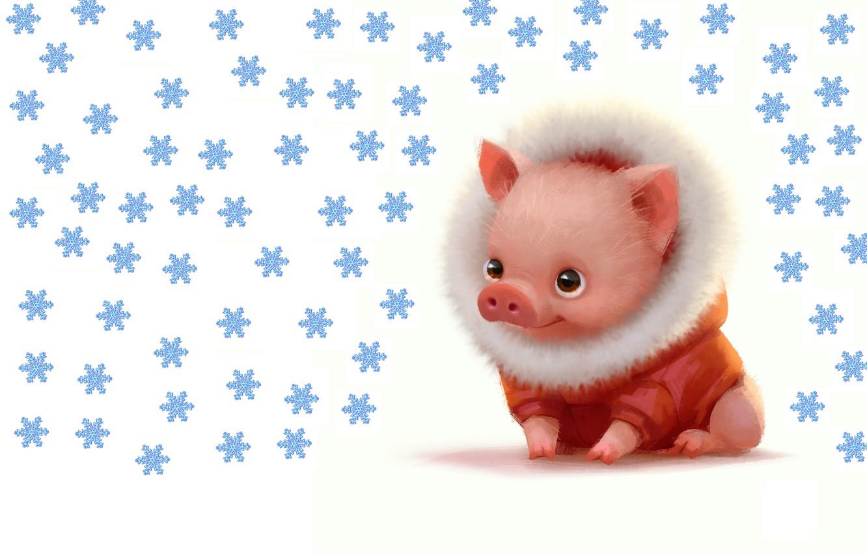 Photo wallpaper winter, baby, art, New year, pig, pig, Lynn Chen, Lil piggy dude