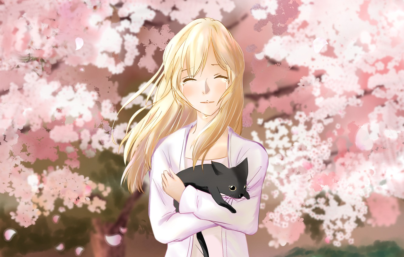 Photo wallpaper cat, girl, spring, garden, Sakura, Shigatsu wa Kimi no Uso, Your April lie