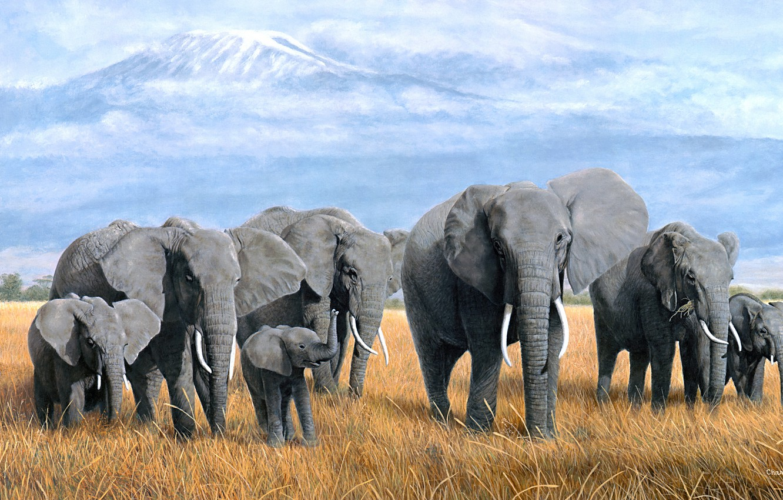Photo wallpaper field, grass, clouds, mountains, nature, figure, elephant, picture, art, Savannah, haze, painting, elephants, a lot, …