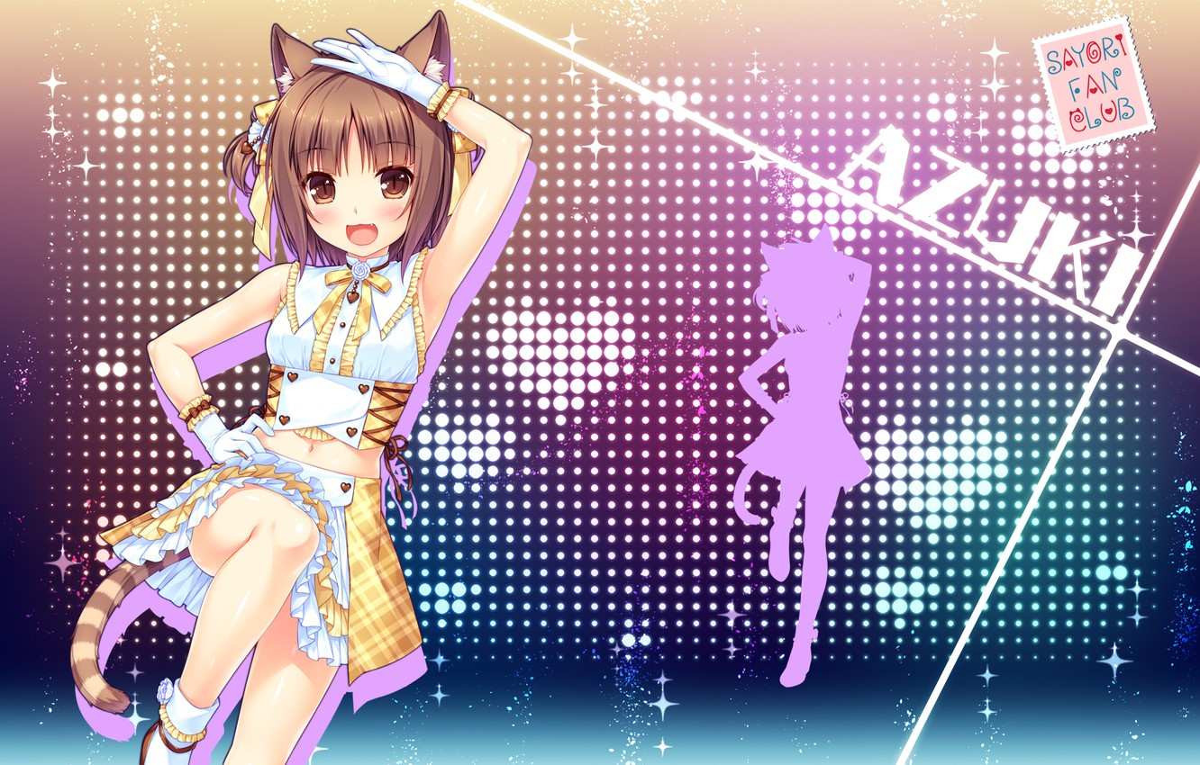 Photo wallpaper girl, sexy, Anime, blouse, brown hair, brown eyes, tail, beautiful, short hair, pretty, erotic, attractive, …