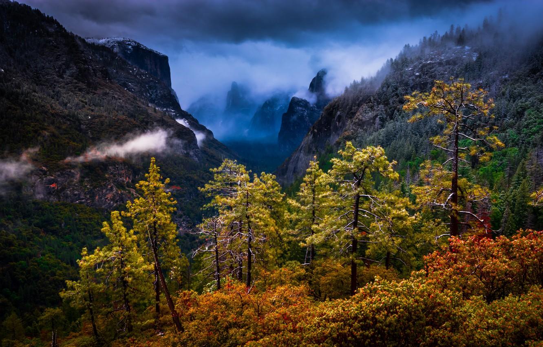 Photo wallpaper trees, mountains, CA, California, Yosemite national Park, Yosemite National Park, Sierra Nevada, Sierra Nevada