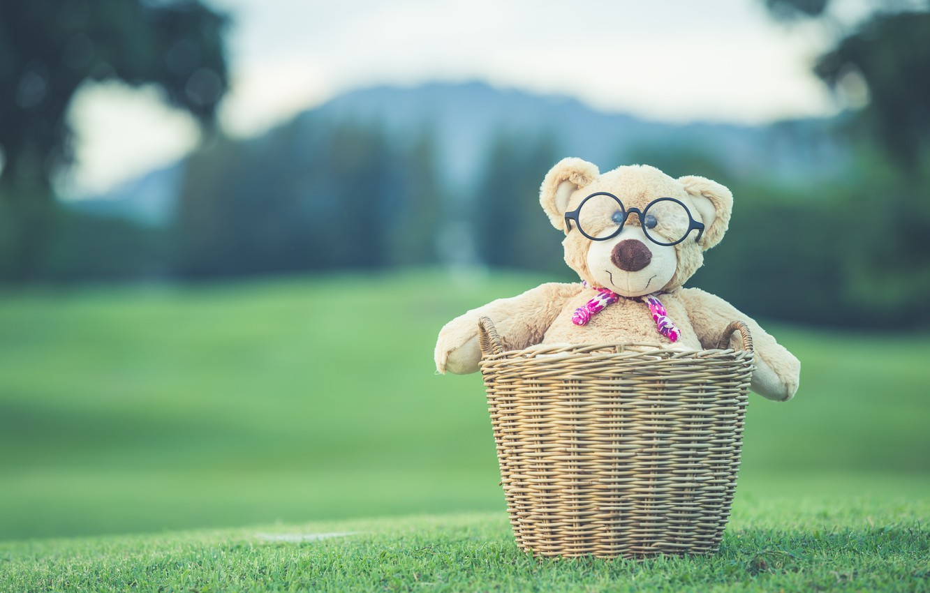 Photo wallpaper summer, basket, toy, bear, bear, summer, vintage, bear, retro, teddy, lonely, cute, lonely