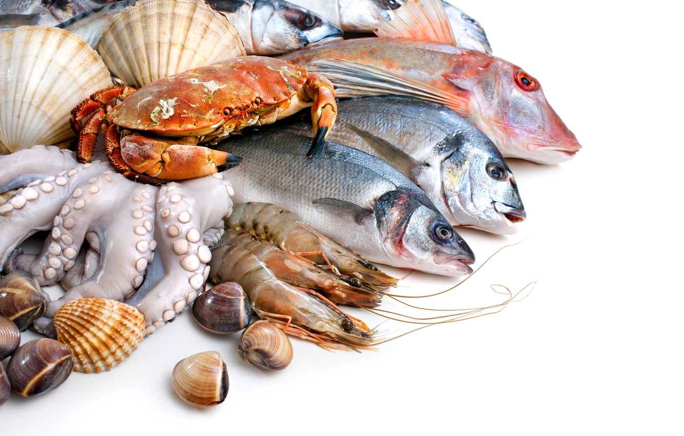 Photo wallpaper fish, white background, shell, crabs, shrimp, seafood, squid